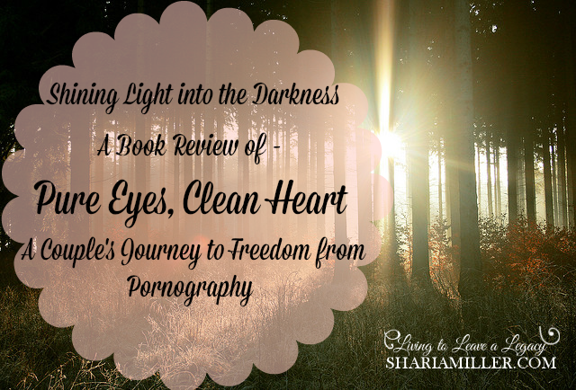 Pure Eyes Clean Heart Book Review